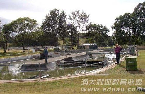 澳大利亚南十字星大学本硕连读课程