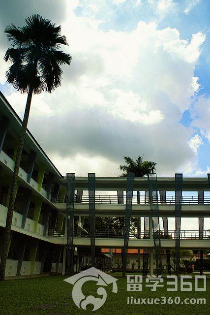 学新加坡校区 迈向成功的阶梯