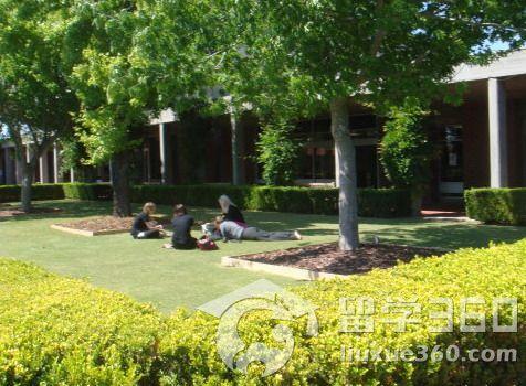 科廷大学世界排名