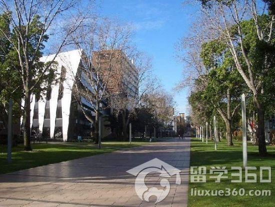 新南威尔士大学特色专业