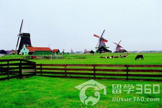 荷兰高等教育体系分为三种