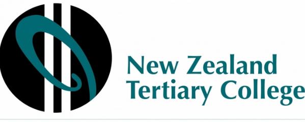 新西兰留学高等教育学院----nztc幼教专业介绍图片