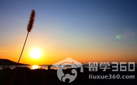 韩国留学网