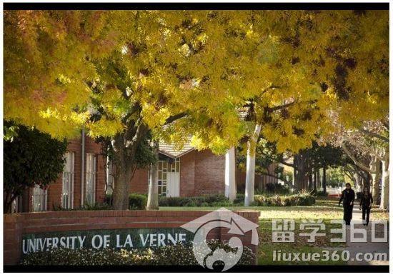 拉文大学4