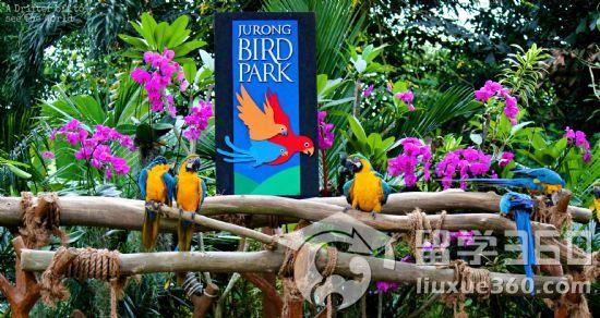 """新加坡4大""""耍大牌""""动物园!走过路过不能错过! - 国外"""