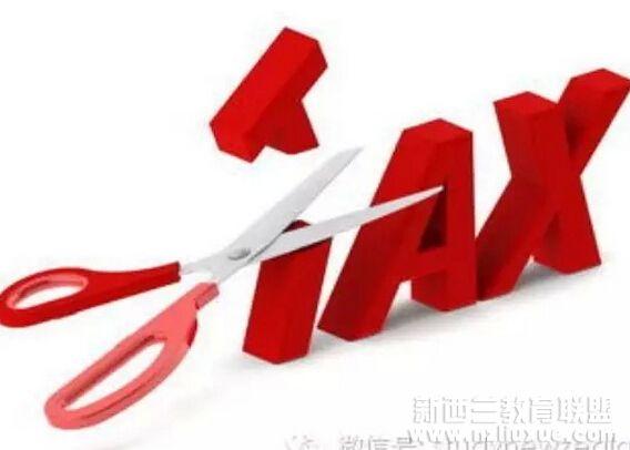 个人收入所得税的英文名称是tax on annual income.