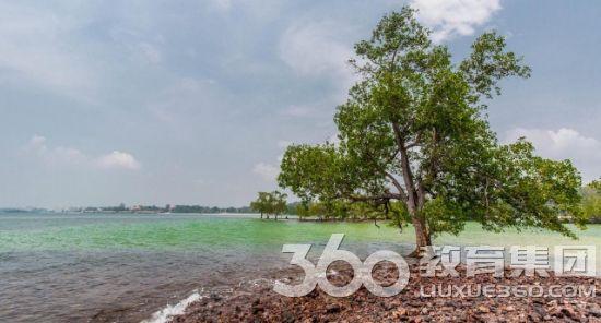 森美兰州波德申的 Teluk Kemang 海滩