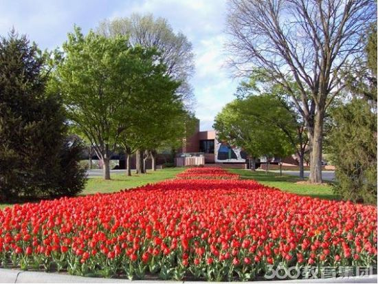 威奇塔州立大学入学要求