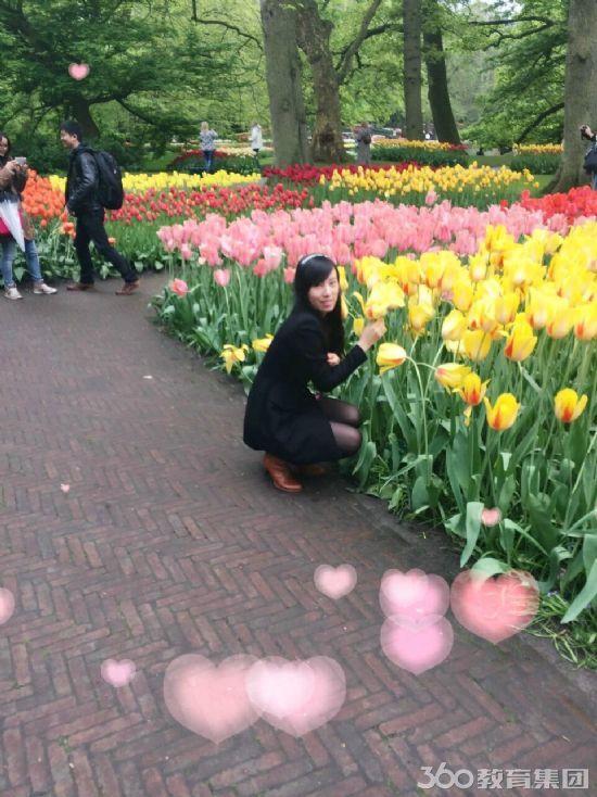 春节花展小园圃设计图
