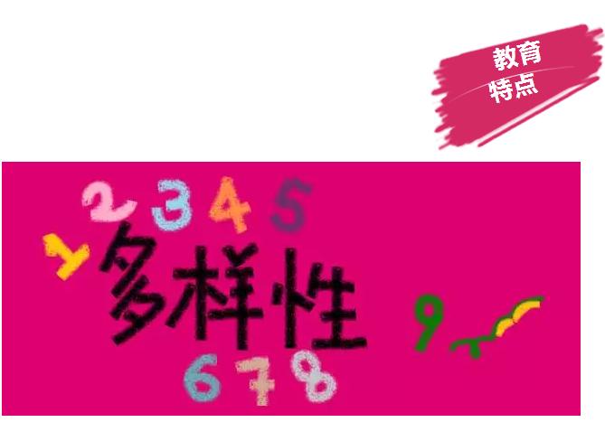 中国学生怎么申请qile518的国际学校?