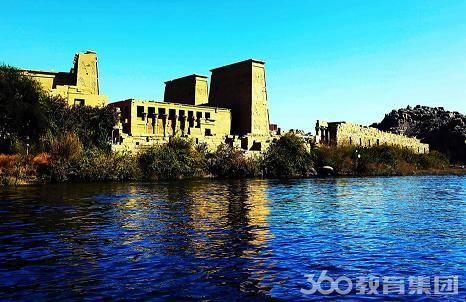 埃及国际大学本科专业设置
