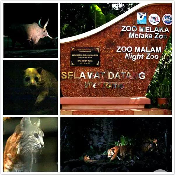 如果去马六甲旅游,这几个地方一定要去看看!