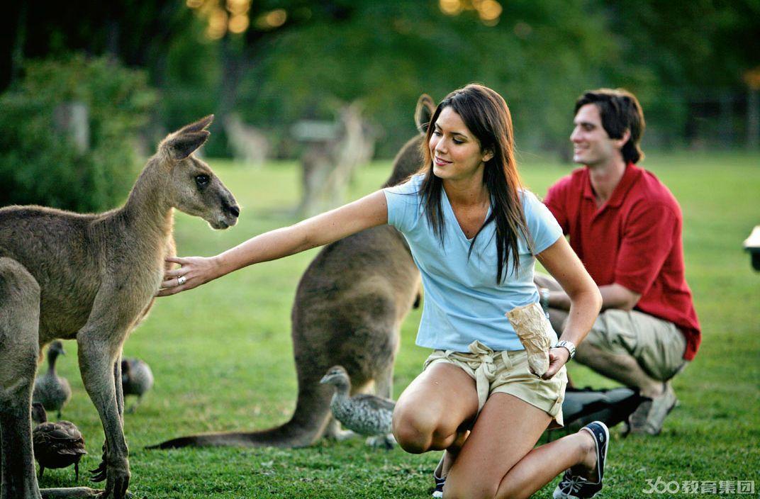 澳洲留学申请