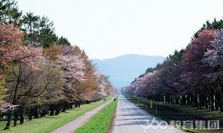 日本英语介绍风景