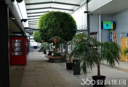 """学校主教学楼中线走廊设计为步行街形式,中有各类绿色植物,并设有""""煞"""