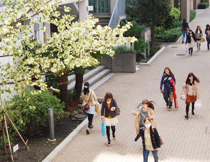 日本 女子 大学 日本女子大学の評判について【品のある有名女子大学】