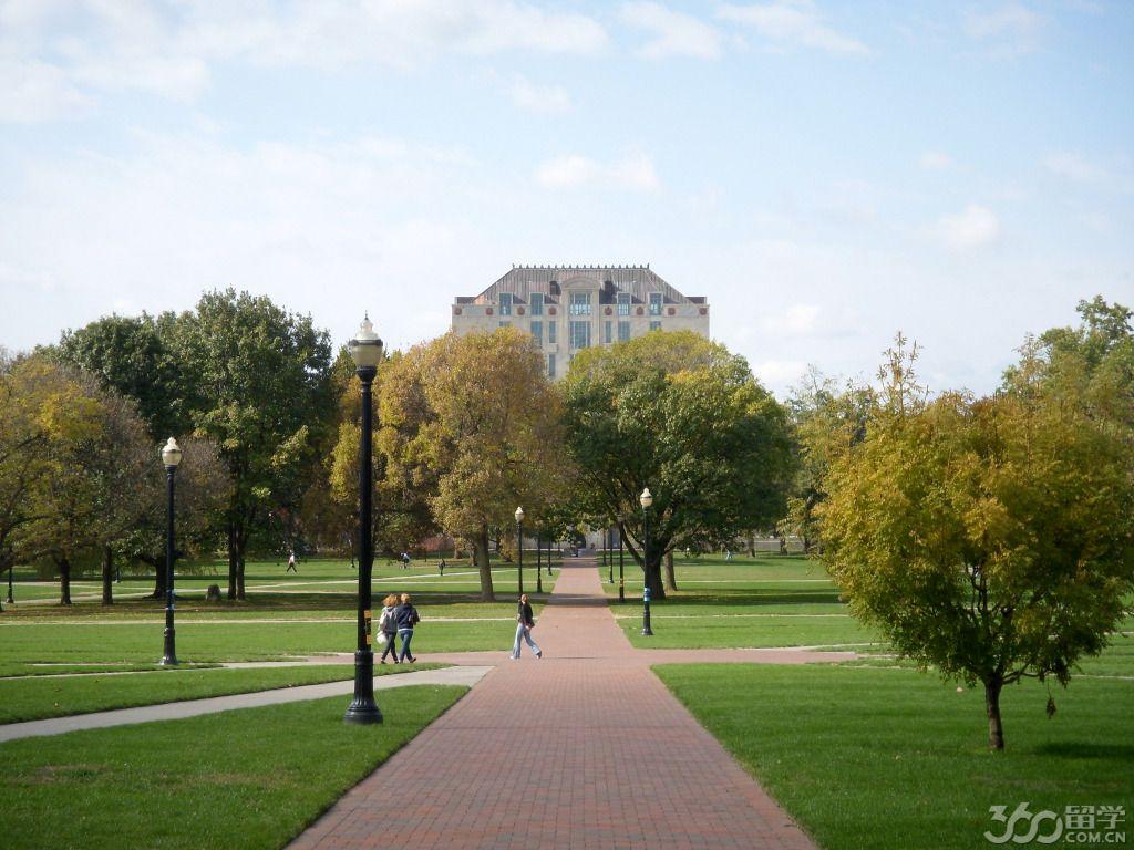 美国大学较热门专业