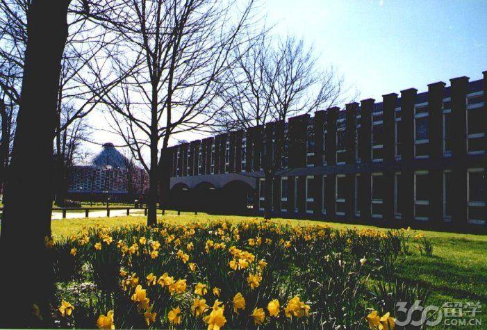 萨塞克斯大学