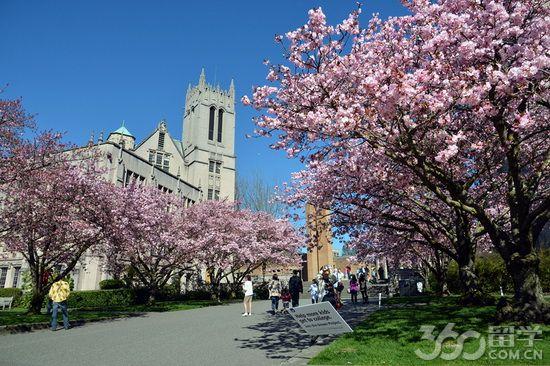华盛顿大学怎样