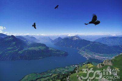 瑞士SEG酒店管理教育集团