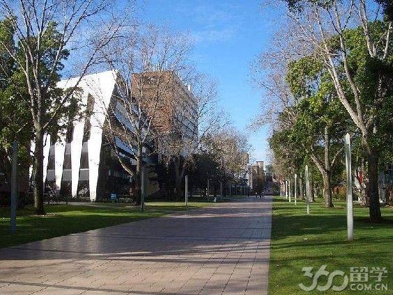 澳洲新南威尔士大学趣闻轶事
