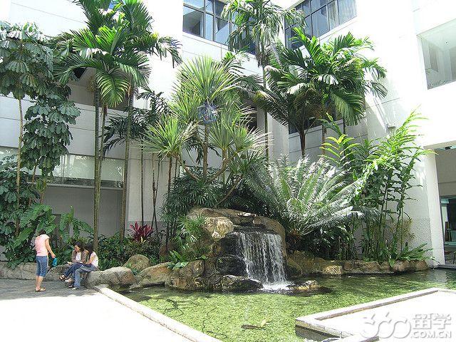 新加坡管理学院合作大学