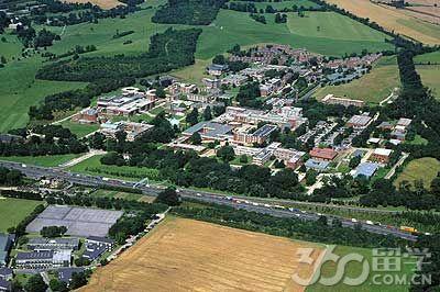 萨塞克斯大学国际中心