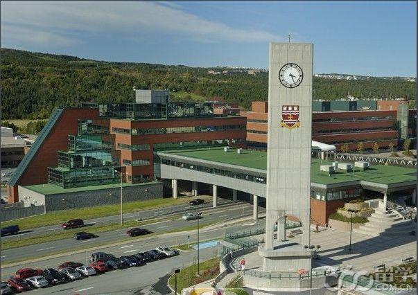纽芬兰纪念大学本科