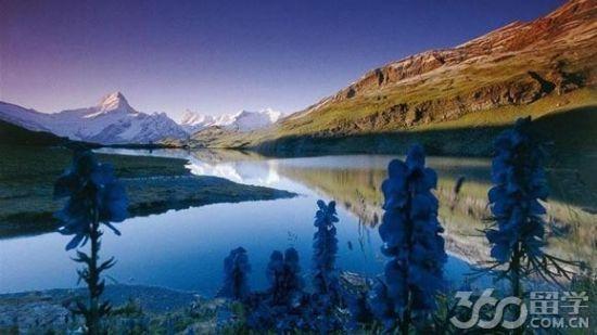 瑞士留学的学费及奖学金介绍