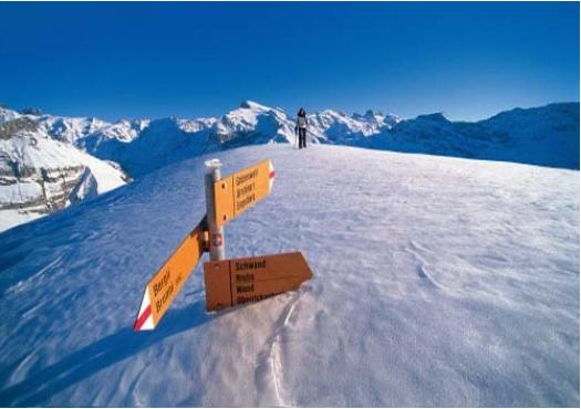 瑞士留学全方位解析所有的申请材料