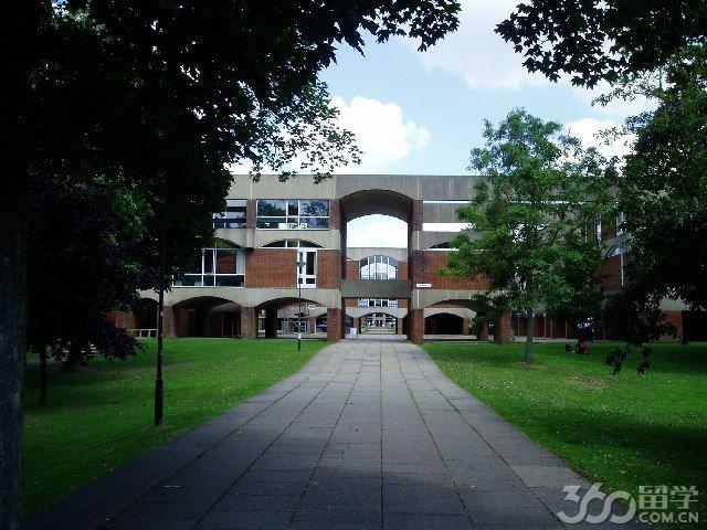 大学超市组织结构