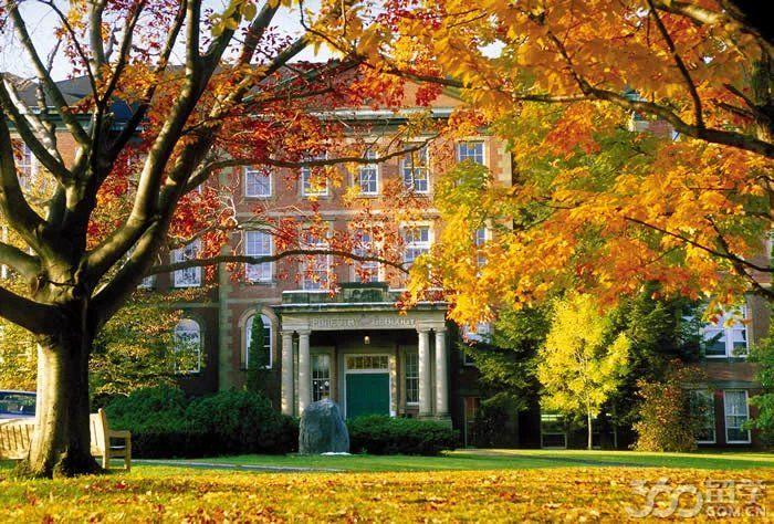 新不伦瑞克大学