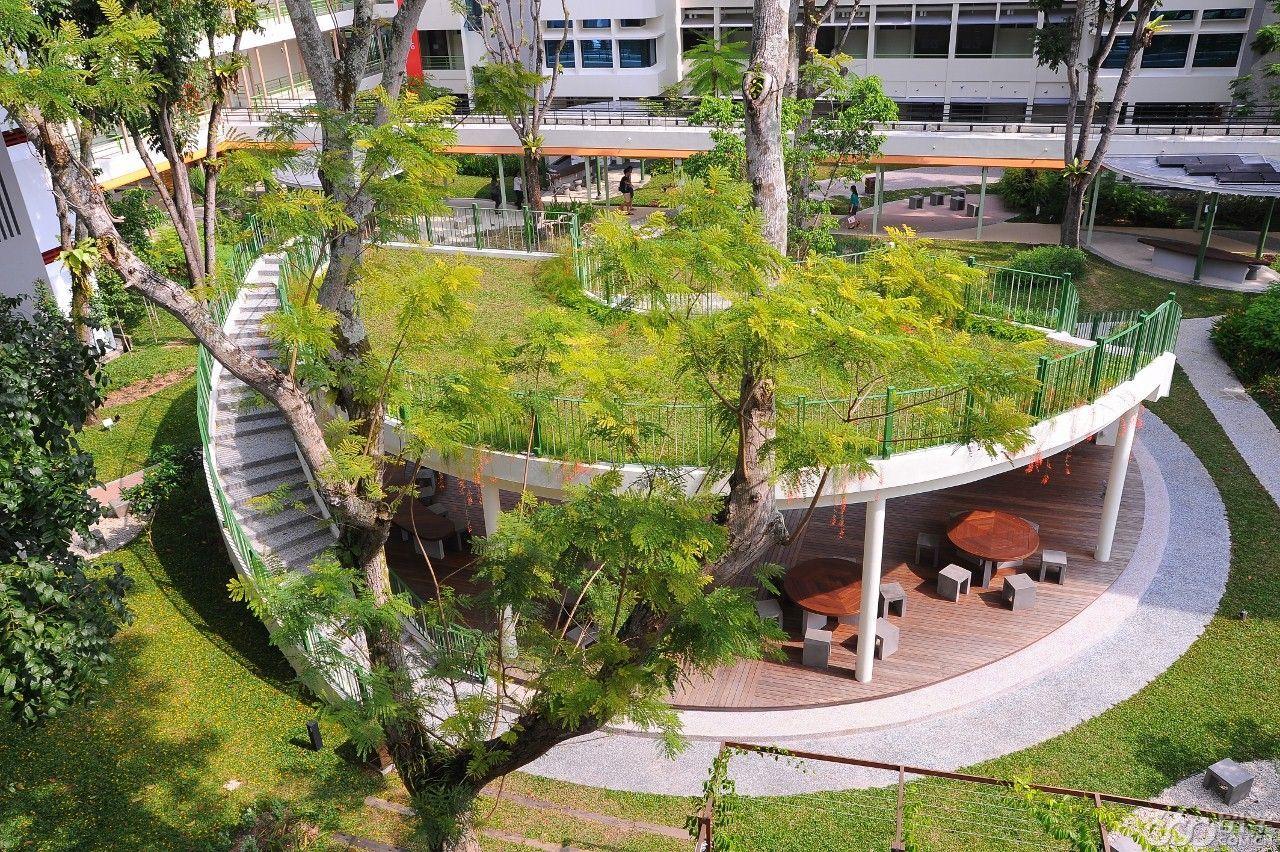 新加坡理工学院优势专业