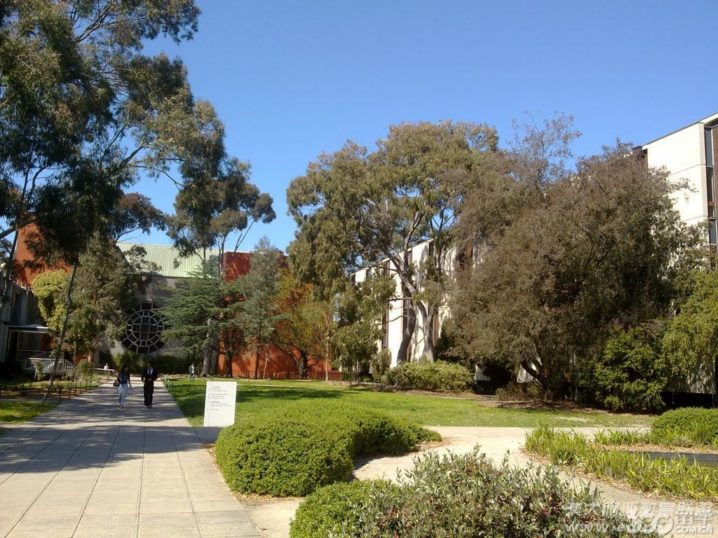 莫纳什大学化学工程学士专业入学要求