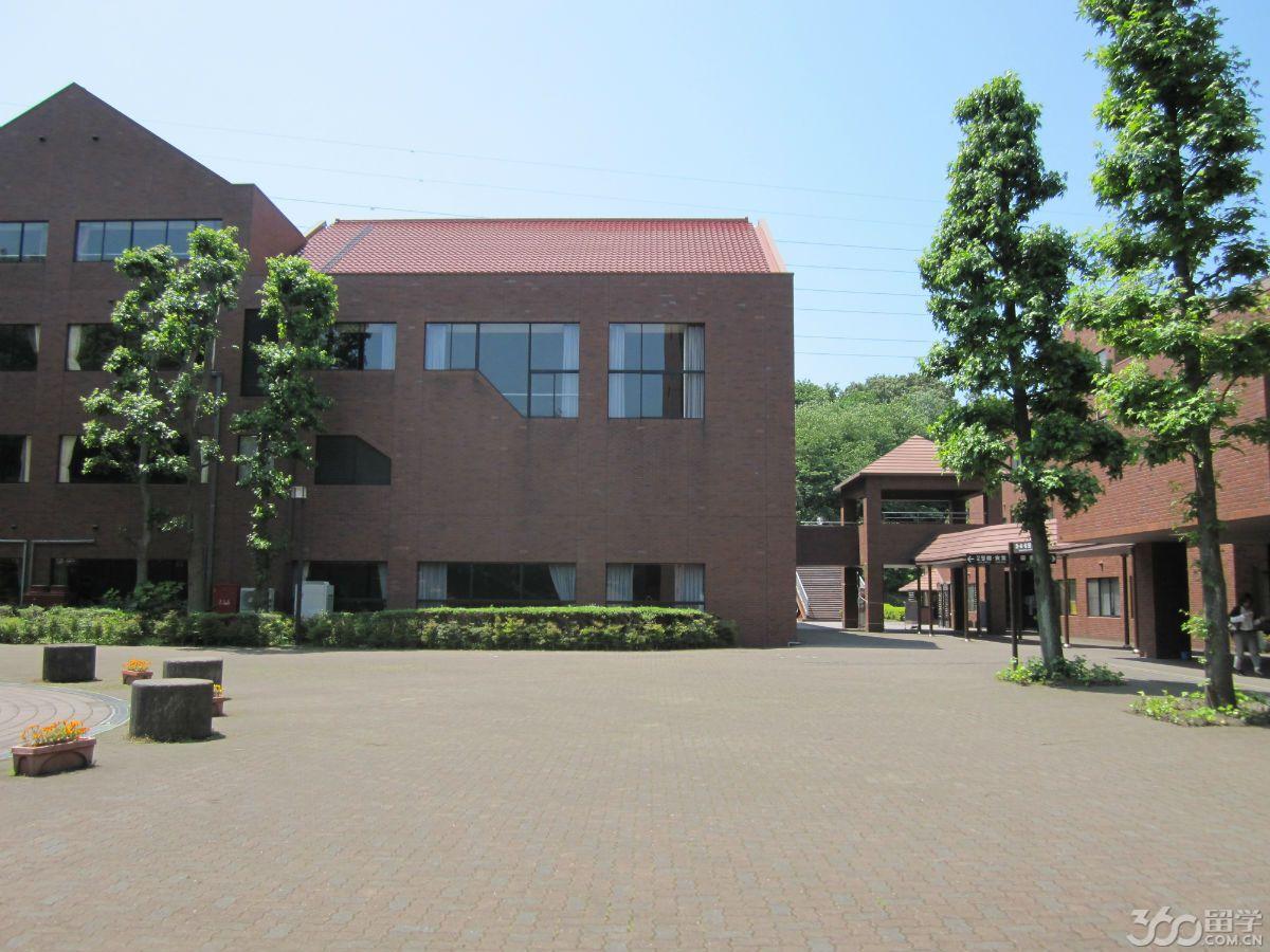 申请日本大学本科 申请日本大学本科
