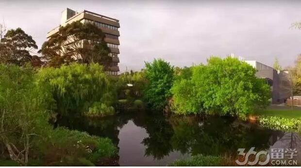 梅西大学设有五个主要的学院:商学院