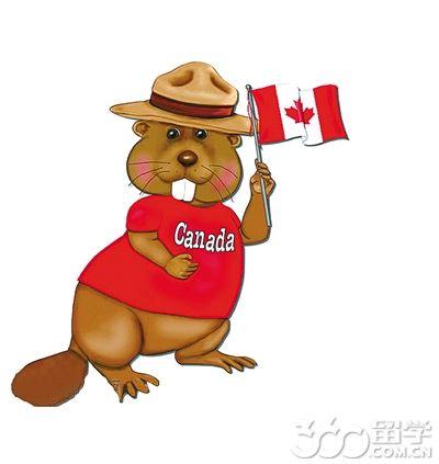 2017年加拿大留学寄宿生活