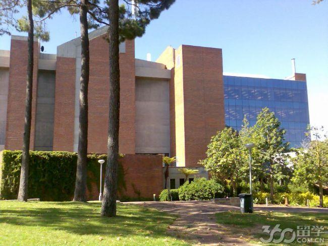 科廷科技大学课程设置及专业设置