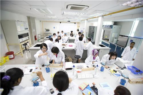 马来西亚留学专家分析申请读硕的优势