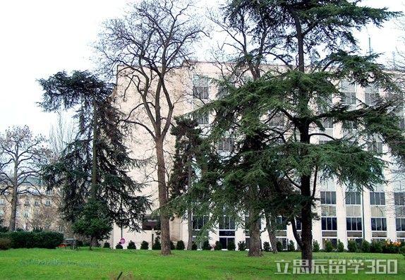 法国巴黎第九大学特色
