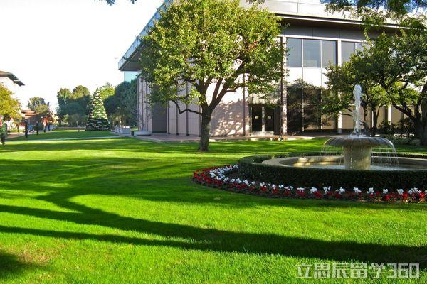 威斯康辛大学麦迪逊分校组织结构