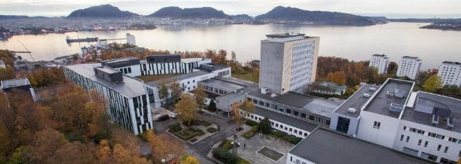 想要到挪威商学院读本科需要准备什么?