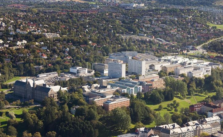 挪威生命科学大学英文授课硕士项目