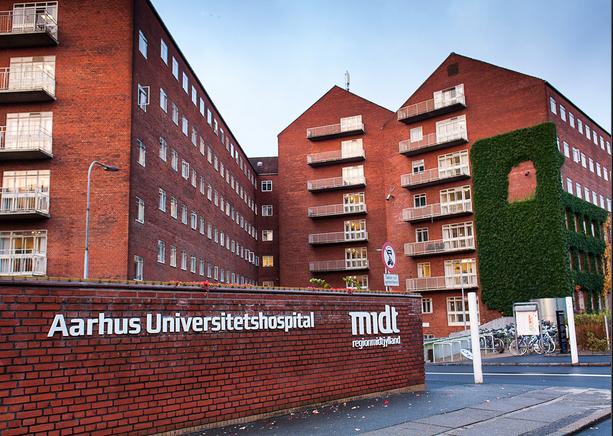 丹麦奥尔胡斯大学硕士课程有哪些?