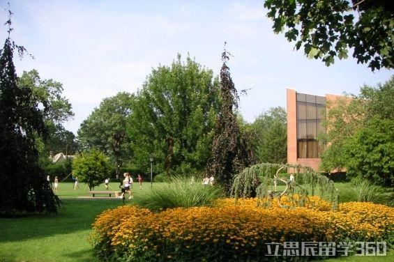 伊利诺伊州立大学排名
