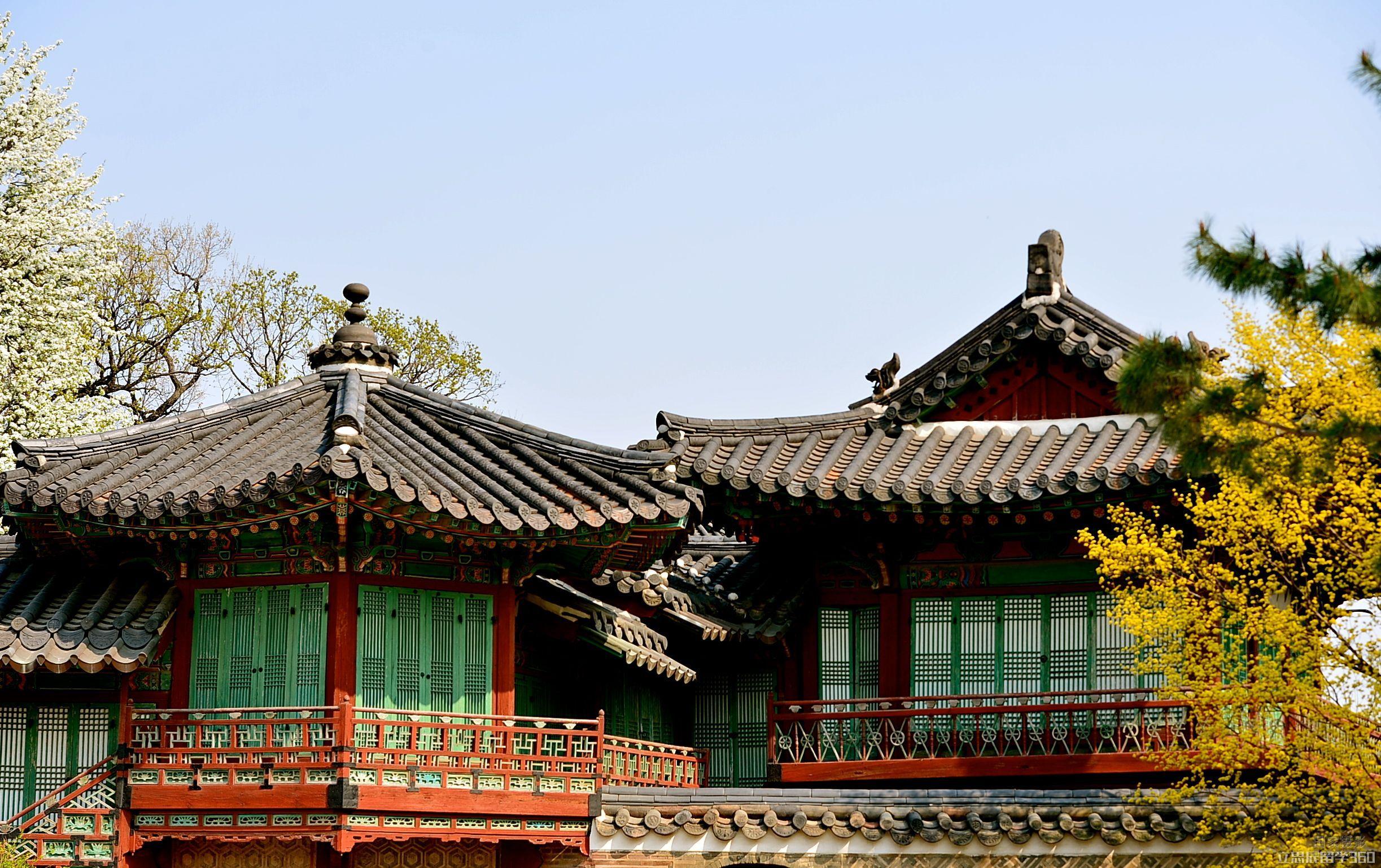 韩国留学大学录取看重的条件