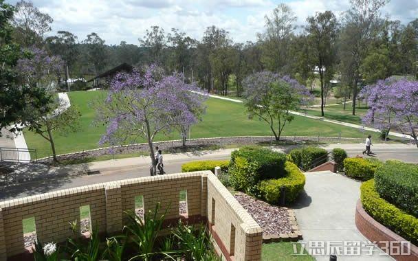南昆士兰大学特色教育