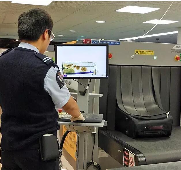 新西兰留学:下飞机后过海关最严格的入境检查六步走