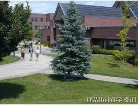 加拿大大学排行