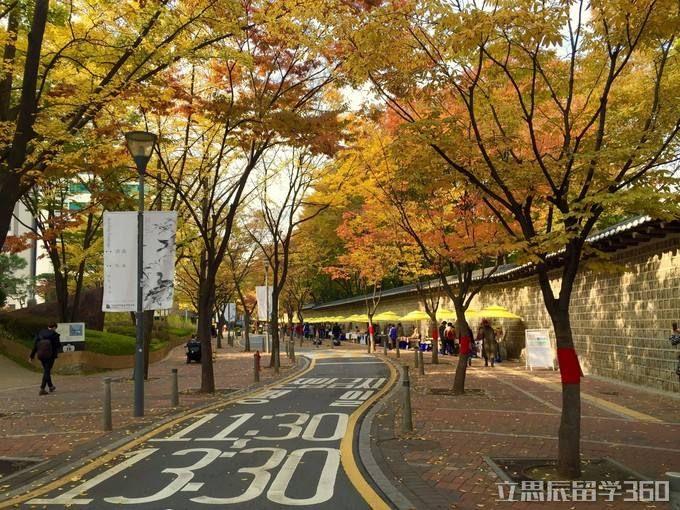 忠南大学优势